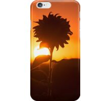 Image by Rob d iPhone Case/Skin
