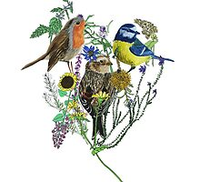 painted bird collage by hollievictoriat