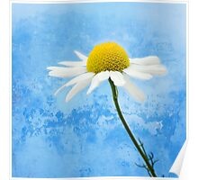 White softness Poster