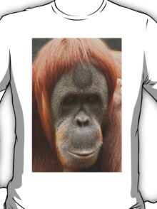 Here's looking at you... T-Shirt