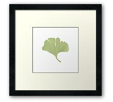 Ginko Leaf Spring Green Framed Print