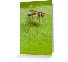 Long-legged Beauty Greeting Card