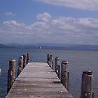 Jetty at Berkeley West, Lake Illawarra, NSW by Tricia Holmes