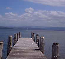 Jetty at Berkeley West, Lake Illawarra, NSW by Tricia Holmes
