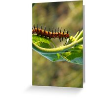 Spike the Caterpiller Greeting Card
