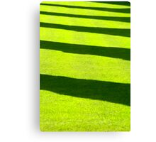 Grass shadow Canvas Print
