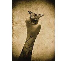 Power & Beauty Photographic Print