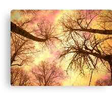 cat scan Canvas Print