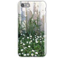Seaside Daisies iPhone Case/Skin