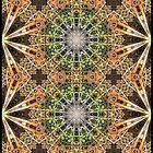 Bright Frame Pattern by Douglas Hill