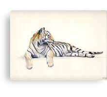 Siberian / Bengal Tiger Canvas Print