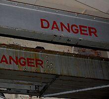Danger Danger!! by MissyVix