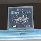 fresh blue crabs sold here sign abstract art  by bkind2animals
