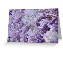 Beautiful purple & pink tree leaf photo from a childs view altered art ! Greeting Card