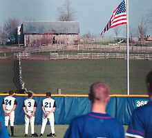 baseball and farms...all american by donna.k. nolan