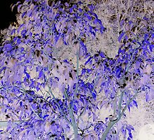 Gorgeous pink & blue ficus tree leaves altered art from a childs view by bkind2animals