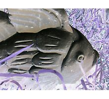 Garden goldfish purple grass altered art photo from a childs view Photographic Print