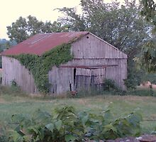 old barn standing. . . by donna.k. nolan