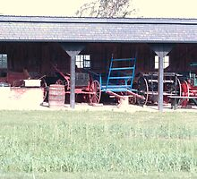 lining up in the shed. . . by donna.k. nolan