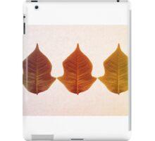 Colour Leaves iPad Case/Skin
