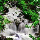 Waterfall in Alaska 2013 by Maureen Clark