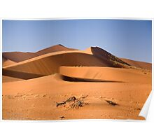 Sand sea of Namibia Poster