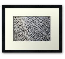 Elephant Skin - Natural Patterns and Textures Framed Print