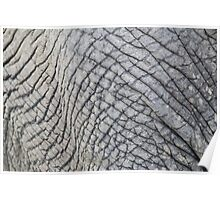 Elephant Skin - Natural Patterns and Textures Poster