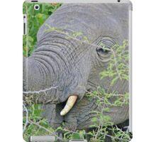 Elephant Hunger - Wildlife Happiness  iPad Case/Skin