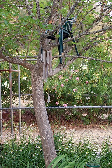 cherry tree by Lenny La Rue, IPA