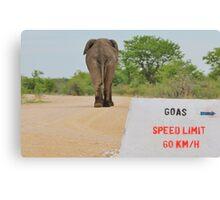 Elephant - Tourists go Slow Canvas Print