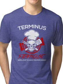 Love The Walking Dead? Tri-blend T-Shirt