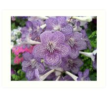 Flowers in lilac Art Print