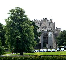 Raby Castle from the side by hilarydougill