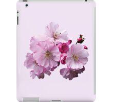 Closeup of Cherry Blossoms iPad Case/Skin