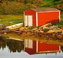 The Little Red Shed by Darlene Ruhs