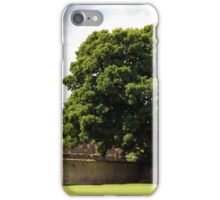 Ancient Walls iPhone Case/Skin