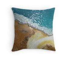 Colors from the Earth Throw Pillow