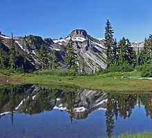 Reflection Lake - Heather Meadows - Mt Baker by Patricia Shriver