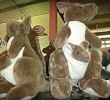 Kangaroos & Joeys Creswick Knitting Mills - Vic. by EdsMum