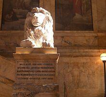 Magestic Lion by HollyERAU
