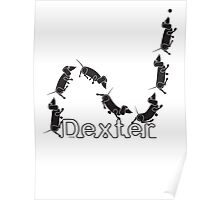Dexter The Ball Boy Poster