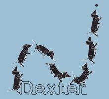 Dexter The Ball Boy by Tom Godfrey