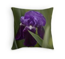 Iris in the Rain Throw Pillow