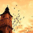 The old town hall tower-Kronstadt by Gabriel Popa