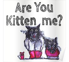 Are You Kitten Me? Poster