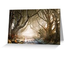 The Dark Hedges   County Antrim  Northern Ireland Greeting Card