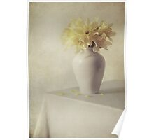 Daffodils in white flower pot Poster