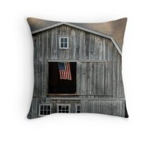 Flying Country Colors Throw Pillow