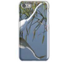 Reflection iPhone Case/Skin